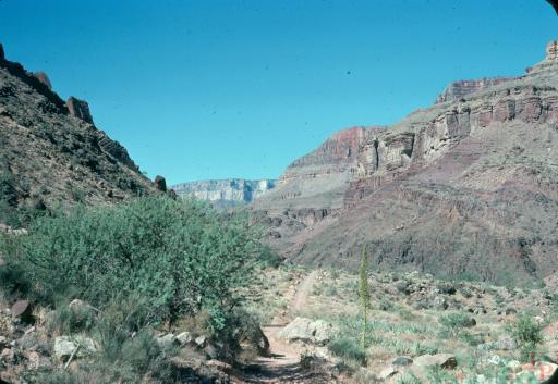 Grand Canyon, Cottonwood Camp, Bright Angel Creek